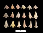 Catahoula Arrow Points from various East Fork Sites
