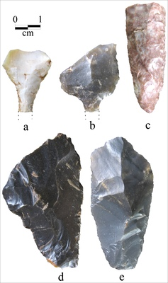 Flake Tools from the Sanders Site