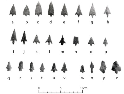 Arrow Points from the Walter Bell Site