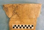 41CP5, Burial 26, Pot 8 by Timothy K. Perttula and Robert Z. Selden Jr.
