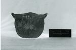 41HS3, 711, Burial A-55 by Timothy K. Perttula and Robert Z. Selden Jr.