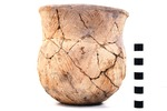 41UR317, Burial 12, Vessel 95, 2003.08.328 by Timothy K. Perttula and Robert Z. Selden Jr.