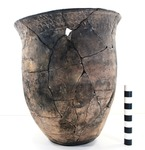 41HS825, 2003.08.1936, Burial 2, Vessel 12 by Timothy K. Perttula and Robert Z. Selden Jr.