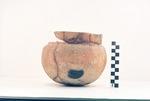 41AN34 - 9, Burial D-1 by Timothy K. Perttula and Robert Z. Selden Jr.