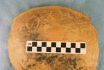 41CP12, Burial 19, Pot 2 by Timothy K. Perttula and Robert Z. Selden Jr.