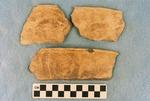 41CP12, Burial 25, Pot 1 by Timothy K. Perttula and Robert Z. Selden Jr.