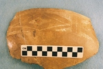41CP5, Burial 15, Pot 8 by Timothy K. Perttula and Robert Z. Selden Jr.