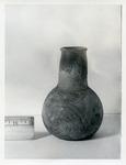 41HS3, 335, Burial A-28 by Timothy K. Perttula and Robert Z. Selden Jr.
