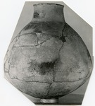 41HS3, 514, Burial A-45 by Timothy K. Perttula and Robert Z. Selden Jr.