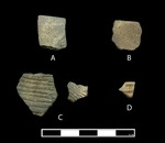 Coles Creek Incised Sherds from 41CS125 by Julian A. Sitters and Timothy K. Perttula
