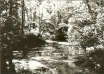 2351-001 Boykin Creek - Angelina National Forest