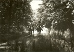 2320-04 Horseback Riders Indian Mounds Wilderness - Sabine National Forest