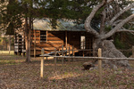 37 Gaines-Oliphant House, Sabine County, Texas by Christopher Talbot